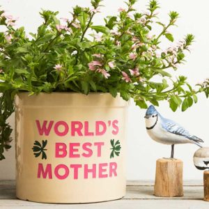 World's Best Mother crock
