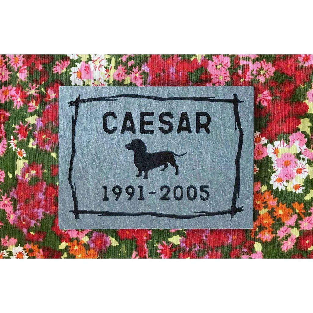 small slate tile Caesar, full design